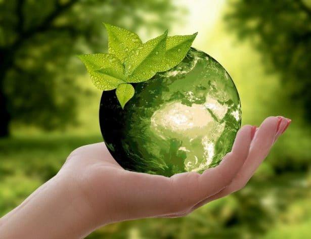 Monica Bove sostenibilidad